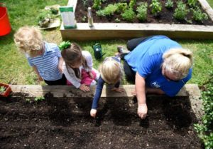 PIFS 3-year-olds plant seeds in the school garden with teacher Clarissa Moore outside Putnam Indian Field School